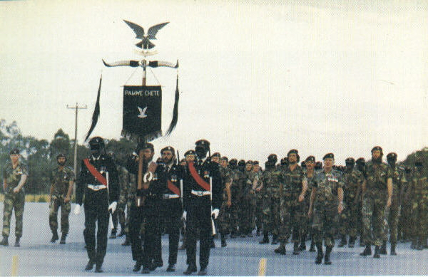 The Regiment on parade, 17Feb1979.
