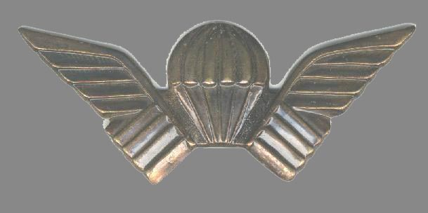 Metal pin-on PARA badge of the Selous Scouts.